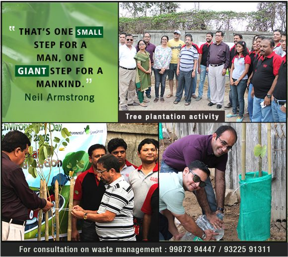 Tree Plantation activity – Triton Greentech Innovations